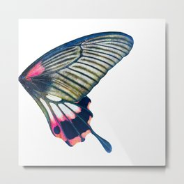 Butterfly right wing - find the left wing in my store :) Metal Print