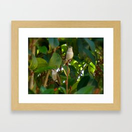 On the Look-Out Framed Art Print
