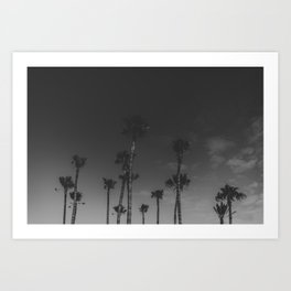 PALMS IN THE DESERT CANARYS Art Print