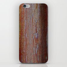 Afloat in the Rustican Sea iPhone & iPod Skin