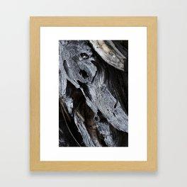 300 Year Old Tree Bark 2 Framed Art Print