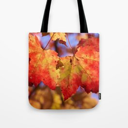 Autumn in Canada - Maple leafs Tote Bag