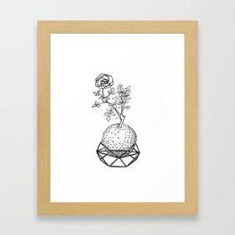 Rose Kokedama Framed Art Print