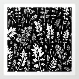 plenty of plants in the dark Art Print