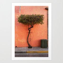 Tlaquepaque, Jalisco Art Print