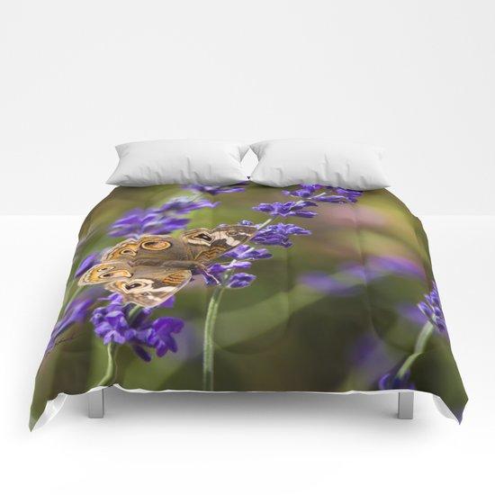 Lavender Landing Comforters