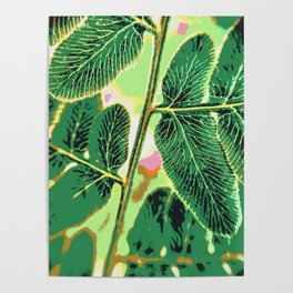 party fern Poster