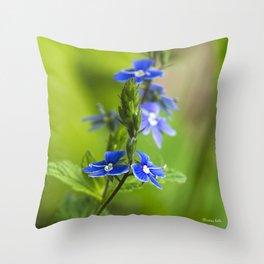 Blue Speedwell Flowers Throw Pillow