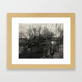 Creekside Black and White Framed Art Print
