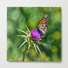 monarch with mustard Metal Print