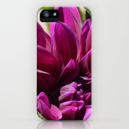 Gonzo Grape Dahlia  iPhone Case