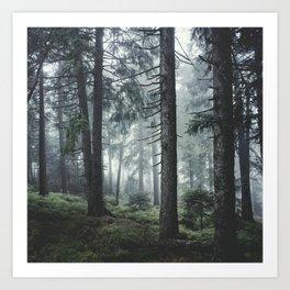 Path Vibes Art Print