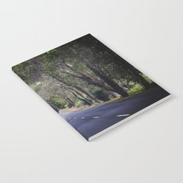 long road home Notebook