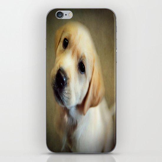 Puppy Love iPhone & iPod Skin