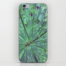 Elegant Equisetum iPhone Skin