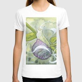 Garden Snail Spirit T-shirt
