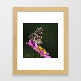 Butterfly Blossom Framed Art Print