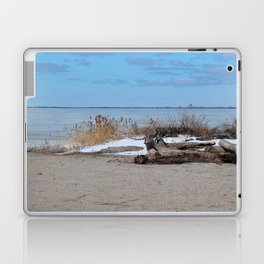 Maumee Bay in Winter III Laptop & iPad Skin