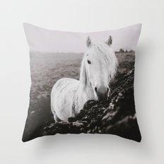 Beautiful Grey Throw Pillow