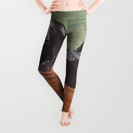 Misty River Leggings
