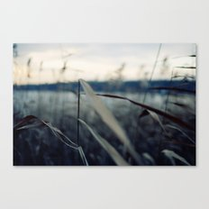 Winter Wind Canvas Print