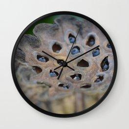 seed pod Wall Clock