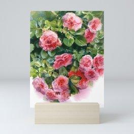 rose bush, watercolor sketch from nature Mini Art Print
