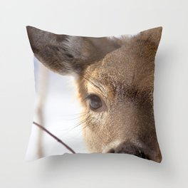 Watercolor Deer, Eastern Whitetail 14, Antietam, Maryland, Cold Stare Throw Pillow