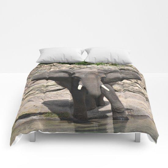 Elephant Ears Comforters