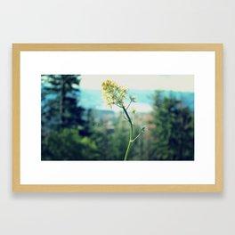 Buttercup Hikes Framed Art Print