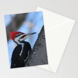 Wood Pecker Stationery Cards