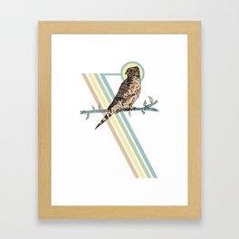 Mauritius Kestrel Falcon Framed Art Print