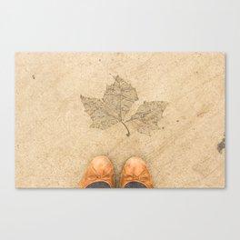 Urban fall Canvas Print