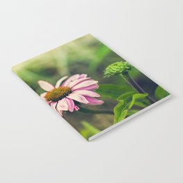 Daisy V Notebook