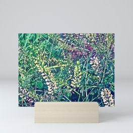 Sweet Grass Mini Art Print