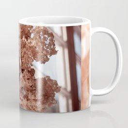 hortensia dried flowers hanging Coffee Mug