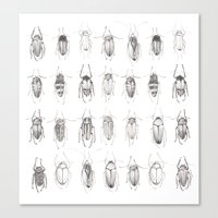 bugs Canvas Prints featuring Bugs by Emma Kelly