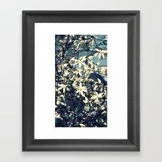 White magnolia tree Framed Art Print