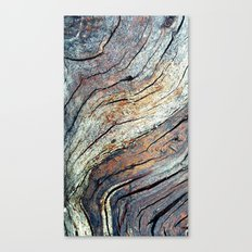 The Colours of the Trees Canvas Print