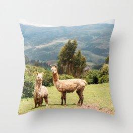 Llama Party Throw Pillow