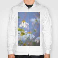 Daisies on a sunny summer day with blue sky Hoody