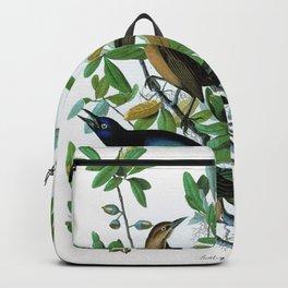 Boat-tailed Grackle - John James Audubon Backpack