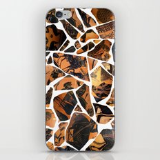 Mosaic iPhone & iPod Skin
