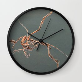 Gryphon Skeleton Anatomy No Labels Wall Clock