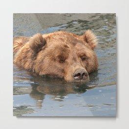 Bear 2014-0901 Metal Print