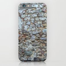 ROCK WALL - COLOR VERSION Slim Case iPhone 6s