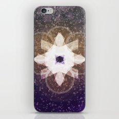 Recovered iPhone & iPod Skin