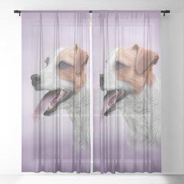 Jack Russell Terrier Sheer Curtain
