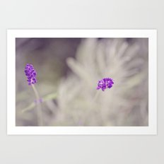 A hint of Purple Art Print