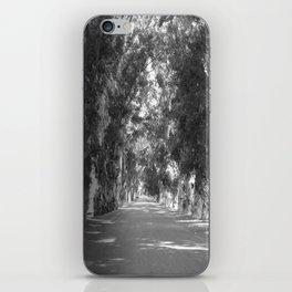 A Road Less Traveled iPhone Skin